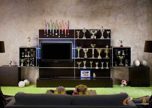 选择这种带推拉门的电视柜,书,杂志,光盘,电视,娱乐设施都能装进去.